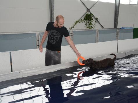 aquabello ein schwimmbad f r hunde hat in klein auheim. Black Bedroom Furniture Sets. Home Design Ideas