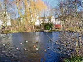 Park am Entenweiher in Urberach: Klein-Woodstock oder Ruhezone? - op-online.de