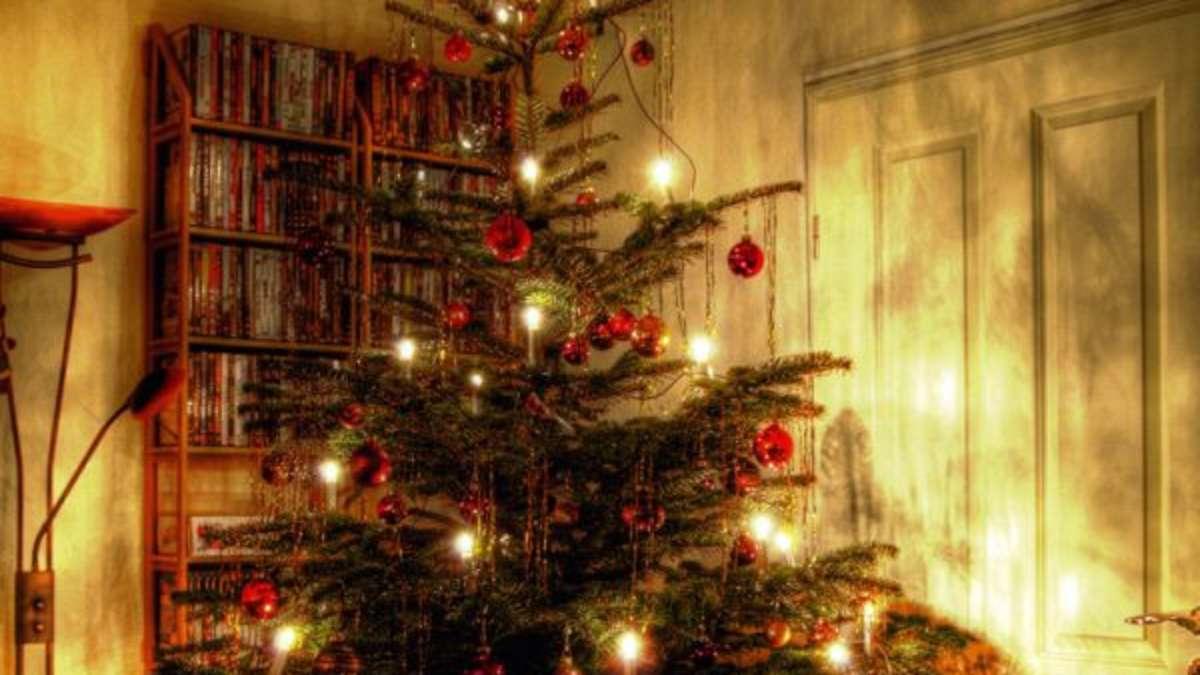 wir haben mit menschen gesprochen die an weihnachten. Black Bedroom Furniture Sets. Home Design Ideas