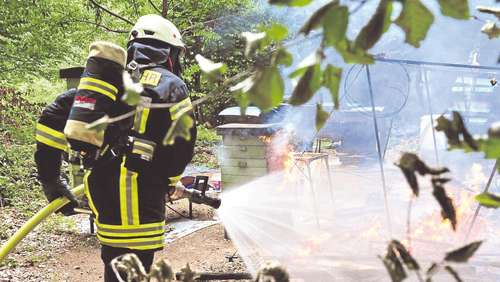 Bienenstock in Flammen
