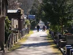 Lange Wege - der Jüdische Friedhof in Weißensee ist mit mehr als 42 Hektar der größte Europas, der noch genutzt wird. Foto: Andreas Heimann