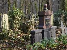 Gräber zwischen viel Grün - der Jüdische Friedhof in Weißensee ist selbst ein Waldstück mitten in der Stadt. Foto: Andreas Heimann