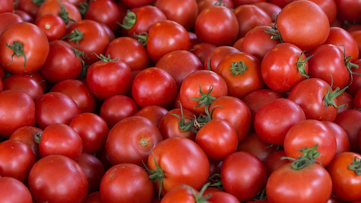 unfall am frankfurter kreuz tomaten auf der a3 und langer. Black Bedroom Furniture Sets. Home Design Ideas