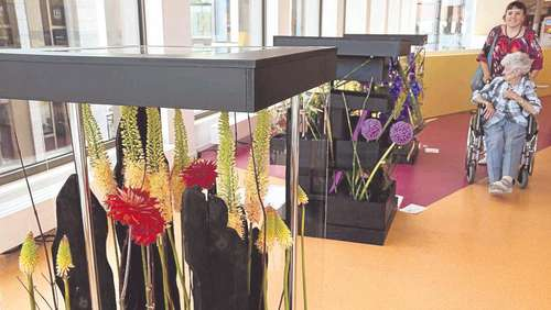 Florale Hingucker im Kulturforum