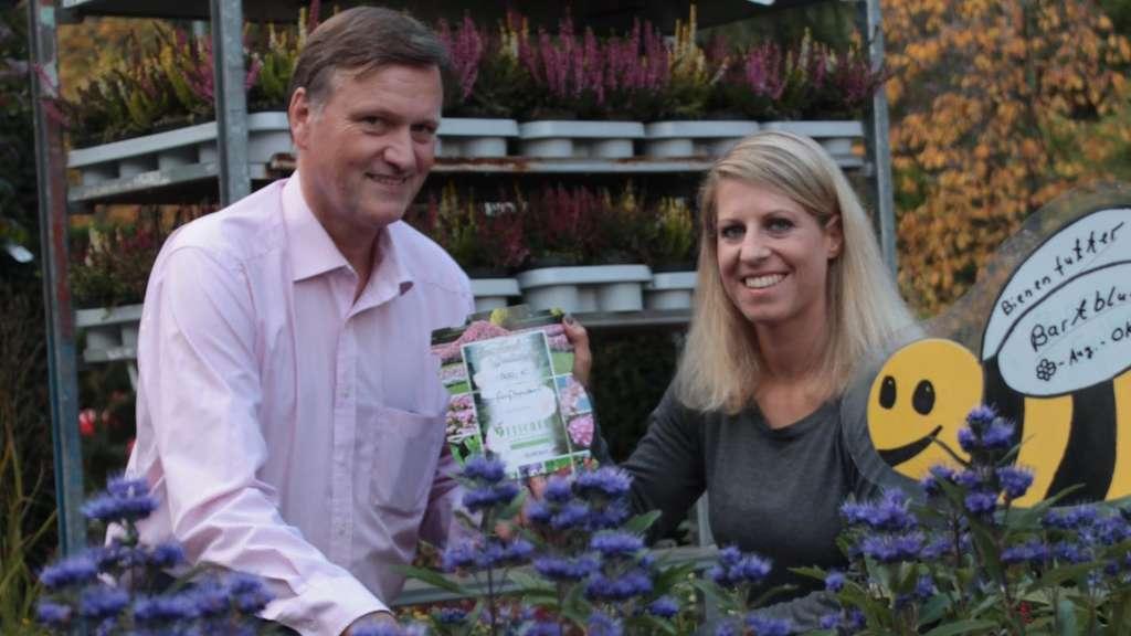 Garten Dietzenbach gewinner des gartenwettbewerbs 2017 steht den schönsten garten