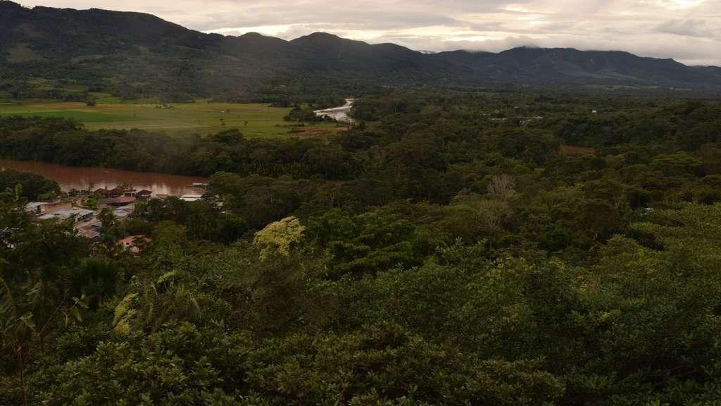 Grüne Lunge: Fünf Monate zu früh musste die Langenerin ihren Freiwilligendienst in Moyobamba im Regenwaldgebiet beenden – wegen Corona.