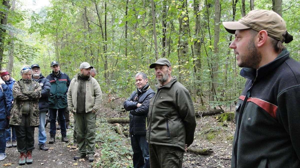 Forstamtsmitarbeiter informieren Mühlheims Stadtverordnete über Zustand des Waldes